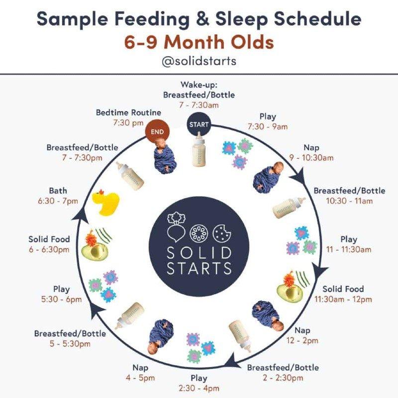 sample feeding and sleep schedule
